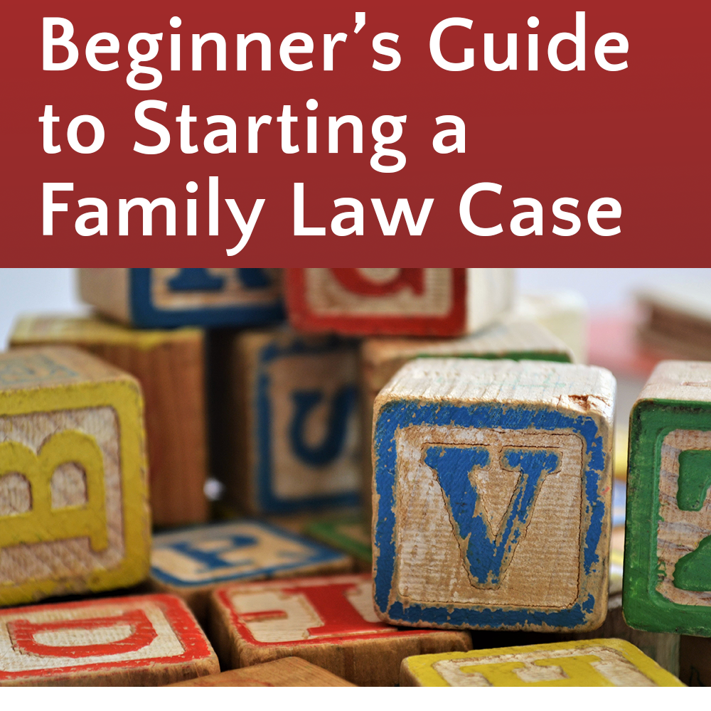 Starting Your Family Law Case @ Burien Library (KCLS)